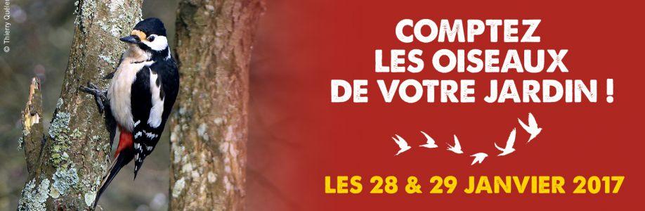 Bretagne Vivante Cover Image