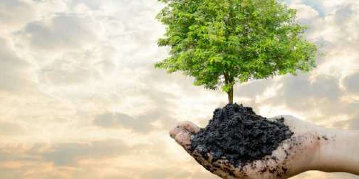 How to choose an ISO 14001 Consultant