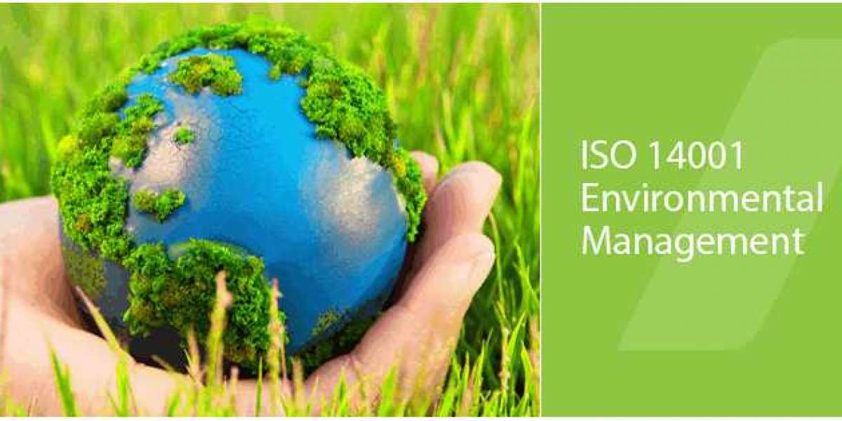 Unknown Facts About  ISO 14001 Certification in Saudi Arabia <